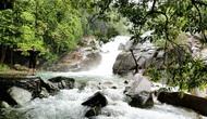 Thừa Thiên Huế: Hỗ trợ tối đa cho doanh nghiệp khi đầu tư vào loại hình du lịch sinh thái