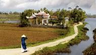 Phát triển văn hóa nông thôn gắn liền với việc phát triển nông nghiệp, xây dựng nông thôn mới