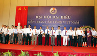 Đại hội đại biểu Lliên đoàn cầu lông Việt Nam nhiệm kỳ V (2011-2015)