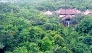Thành lập Khu rừng quốc gia Yên Tử