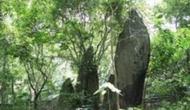 Thành lập Khu rừng K9 tại Ba Vì-Hà Nội