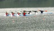 Quy định một số nội dung quản lý hoạt động tổ chức thi đấu đua thuyền Rowing, Canoe và Thuyền truyền thống