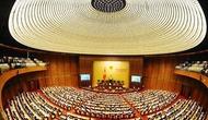 Mít tinh Kỷ niệm 70 năm Ngày Tổng tuyển cử đầu tiên