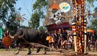 Đắk Lắk: Sẽ loại bỏ lễ đâm trâu