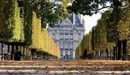 Chiến lược phát huy tính sáng tạo nghệ thuật và sự tham gia vào đời sống văn hóa của Pháp
