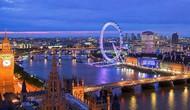 Vương Quốc Anh: Luật pháp trong lĩnh vực văn hóa