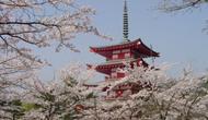Chính sách ngoại giao văn hóa của Nhật Bản