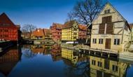Chiến lược phát triển văn hóa nghệ thuật của Đan Mạch