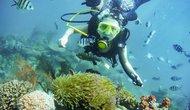 BVHTTDL ban hành quy định với môn Lặn biển thể thao giải trí