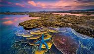 """""""Sắc màu của biển"""" giành giải nhất cuộc thi ảnh nghệ thuật Du lịch toàn quốc lần thứ 8"""