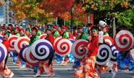Nhiều hoạt động tại Lễ hội Giao lưu Văn hóa Việt - Nhật 2018