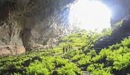 Quảng Bình: Khai thác thử nghiệm nhiều tour du lịch hang động mới