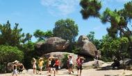 Thanh Hóa: Tập trung công tác quản lý nhà nước đối với hình thức tour du lịch giá rẻ