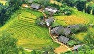 Lào Cai: Xây dựng mô hình thí điểm du lịch cộng đồng tại xã Tả Van, huyện Sa Pa