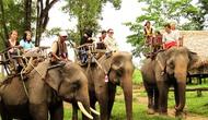 Doanh thu từ du lịch Đắk Lắk ước đạt hơn 390 tỷ đồng