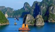 """Quảng Ninh: Hỗ trợ du khách bị đại lý """"bỏ rơi"""" tại Hạ Long"""