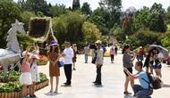 Khách du lịch đến Lâm Đồng tiếp tục tăng