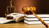 Thành lập Ban soạn thảo và Tổ biên tập dự án Luật Thư viện