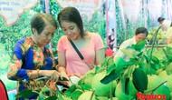 Nhiều hoạt động đặc sắc sẽ diễn ra tại Lễ hội Thanh trà Huế 2018