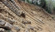 Phú Yên: Phát hiện nhiều vách đá mới tại danh thắng Gành Đá Đĩa