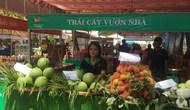 Vĩnh Long: Nhiều hoạt động đặc sắc tại Ngày hội du lịch lần thứ nhất năm 2018