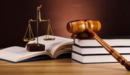 """Hội thảo """"Góp ý hoàn thiện dự thảo Luật Thư viện"""" Khu vực miền Bắc"""