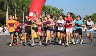 Tổ chức Giải Việt dã truyền thống báo Quảng Nam mở rộng lần thứ XXII