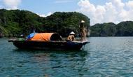 Quảng Ninh: Cấm khai thác thủy sản trong vùng Di sản vịnh Hạ Long