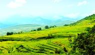 Tuyên Quang: Tổ chức Ngày hội Văn hóa du lịch vùng cao và Liên hoan Nghệ thuật quần chúng năm 2018