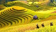 Yên Bái: Phát triển thương hiệu du lịch - cần bài bản và chuyên nghiệp