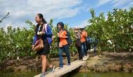 Cần Thơ: Tăng cường công tác quản lý Nhà nước về du lịch