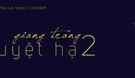 Hành trình 7 năm tìm hiểu thử nghiệm với âm nhạc Trịnh Công Sơn