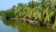 Liên kết phát triển du lịch tiểu vùng duyên hải phía Đông đồng bằng sông Cửu Long