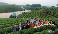 Đoàn Famtrip các tỉnh Đông Bắc Thái Lan khảo sát du lịch tại Thanh Hóa, Nghệ An, Hà Tĩnh