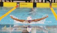 Đại hội Thể thao toàn quốc lần thứ VIII: Đoàn Quân đội tiếp tục dẫn đầu bộ môn Bơi