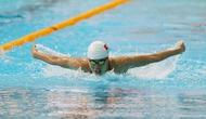 Đại hội Thể thao toàn quốc lần thứ VIII: Môn Bơi bước vào ngày thi đấu cuối cùng