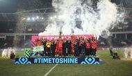 Đội tuyển bóng đá Việt Nam giành ngôi vô địch AFF Cup 2018