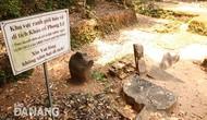 Bộ VHTTDL đồng ý khai quật khảo cổ tại di tích Chăm Phong Lệ, thành phố Đà Nẵng