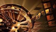 Tổ chức Tuần lễ phim tài liệu quốc tế lần thứ 8