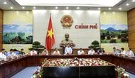 Tạo điểm nhấn, thể hiện tinh hoa văn hóa trong Tuần lễ Cấp cao APEC