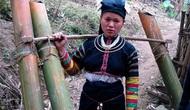 Thành lập Ban Tổ chức lớp truyền dạy văn hóa phi vật thể cho dân tộc Lô Lô tại tỉnh Cao Bằng