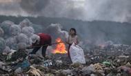 Việt Nam giành giải Nhất ảnh môi trường quốc tế 2017