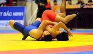 Kết thúc giải Vật Vô địch ĐNA 2017: Việt Nam thống trị giải