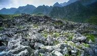 Phê duyệt Quy hoạch tổng thể phát triển du lịch Khu du lịch quốc gia Cao nguyên đá Đồng Văn, tỉnh Hà Giang đến năm 2025, tầm nhìn đến năm 2030