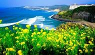 Một số kinh nghiệm phát triển du lịch bền vững trên thế giới